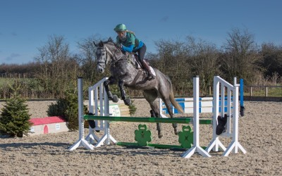 How do I teach my young horse to jump?