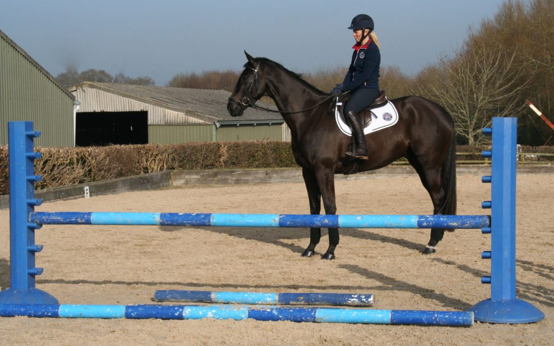 Horse and Hound question of the week: How to I teach my horse to be a good jumper?