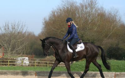 The new season is fast approaching – read more on latest blog for Horse and Hound