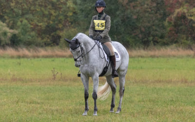 Calmsden and Hoys